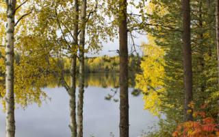 Деревянный карниз для штор своими руками