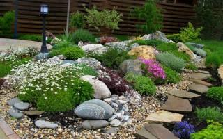 Как создать сад камней своими руками